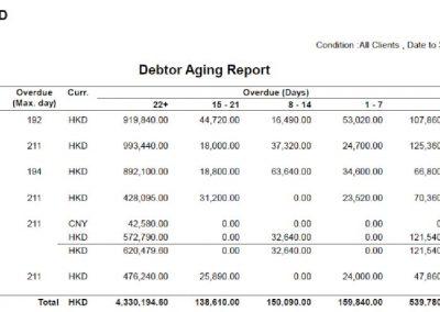 Debtor Aging Detail
