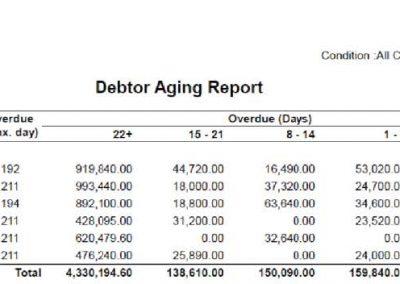 Debtor Aging Summary