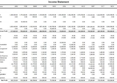 Income Statement (12 months)