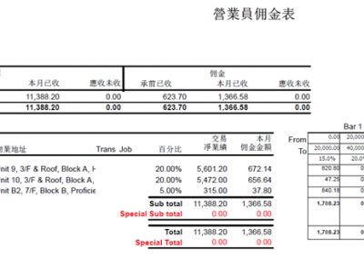 Salesman Report